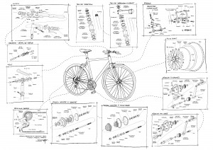 En route pour la démystification du vélo !